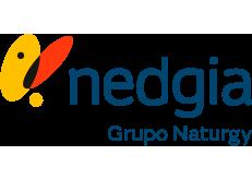 Empresa colaboradora de Nedgia