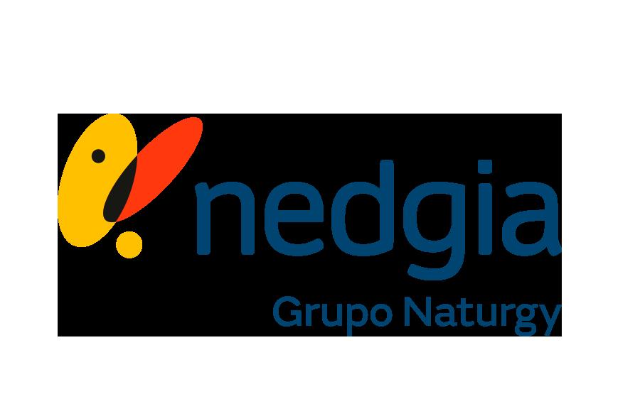nedgia Grupo Naturgy